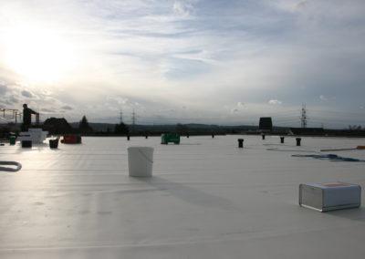 Dach des Baumschulenweg 19
